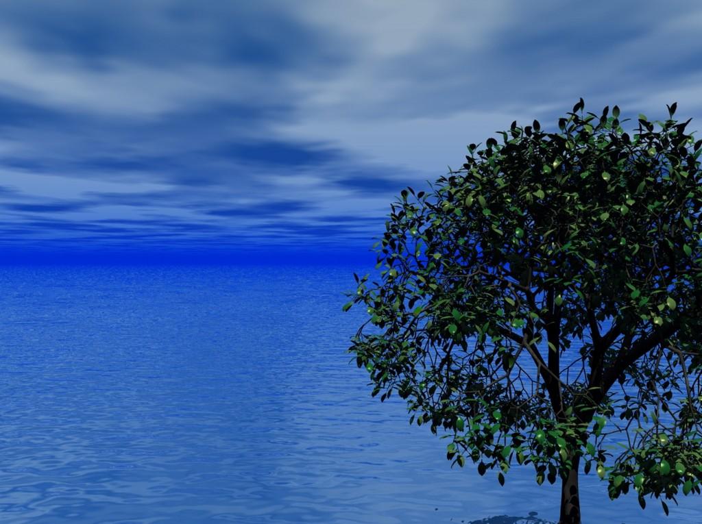 sea_ocean_sky