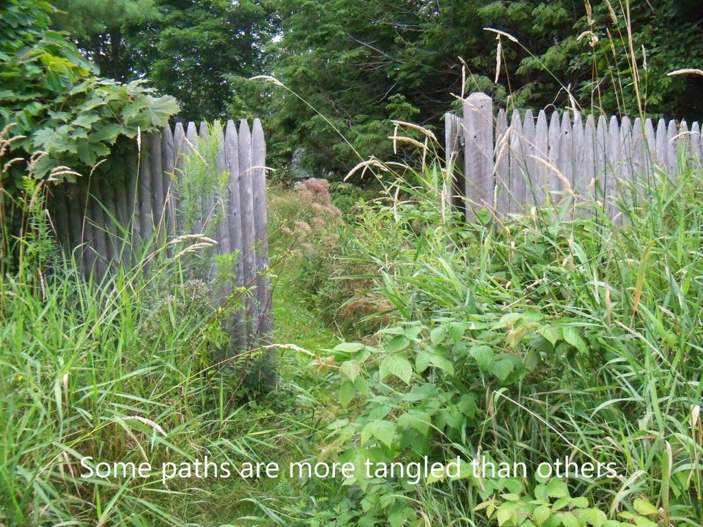 the_garden_path_w_text